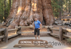 Yosemity en Sequoia National Park (38) (Medium)